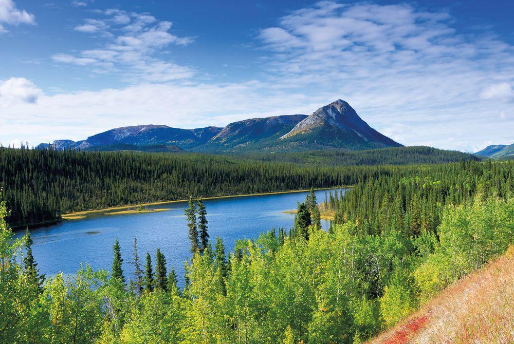 The_Yukon_Canada_26264